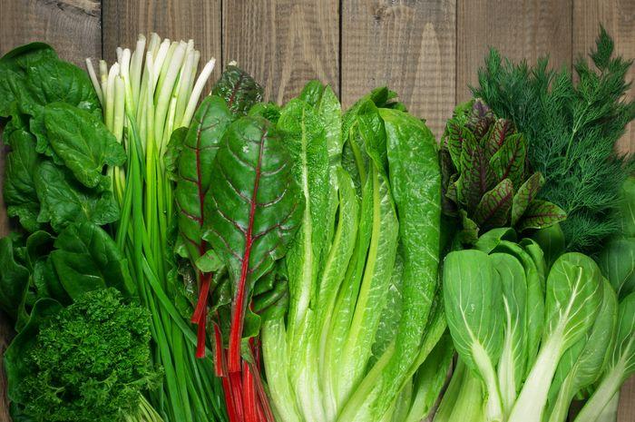 Tumbuhan berdaun hijau dapat mencegah penyakit lemak hati
