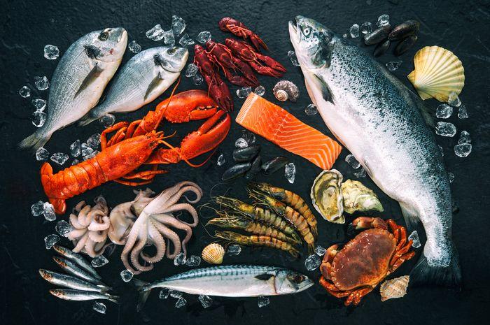 Hewan laut dan risiko menelan mikroplastik.