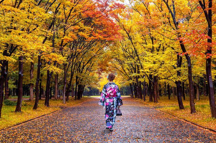 Wabi sabi dapat diterapkan sesederhana melihat keindahan pada daun-daun kering yang gugur.