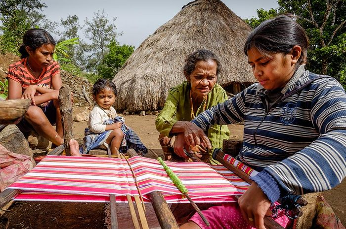 Warga menenun kain has Mollo yang berwarna merah putih di desa Nausus, kaki Gunung Mutis.