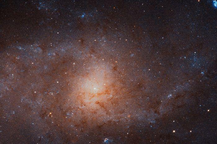 Galaksi Triangulum.