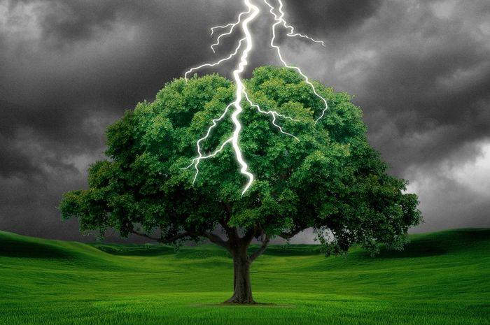 Musim hujan hadir bersama petir dan kilat