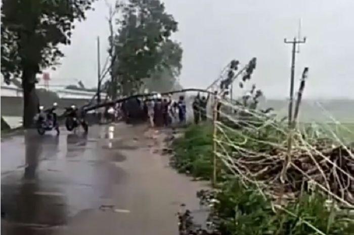 Pohon roboh karena angin puting peliung di Kecamatan Rancaekek, Kabupaten Bandung
