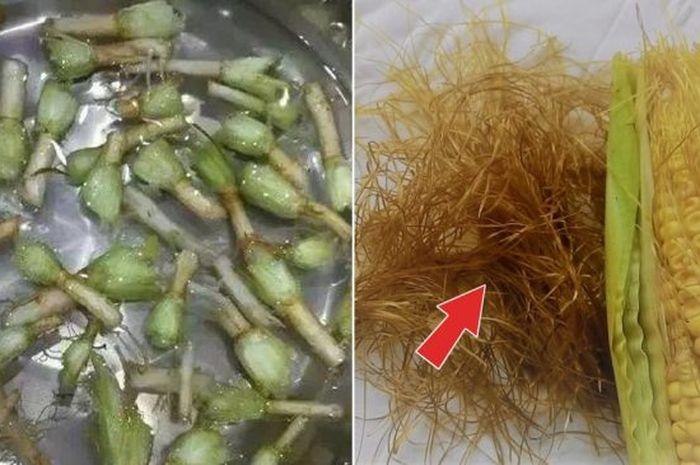 Rambut jagung dapat membantu menurunkan kadar gula darah (pixabay)