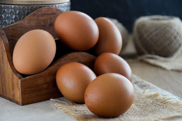 Telur.