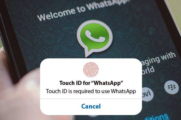 Ilustrasi fitur Touch ID di WhatsApp