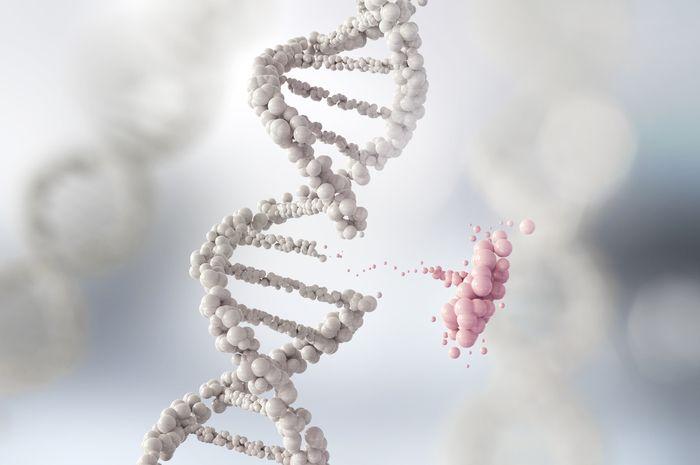 Ilustrasi mutasi DNA manusia.