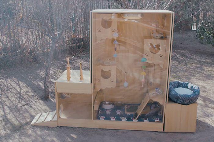 Wan Xi membangun shelter kucing dengan teknologi kecerdasan buatan (AI).Wan Xi membangun shelter kucing dengan teknologi kecerdasan buatan (AI).