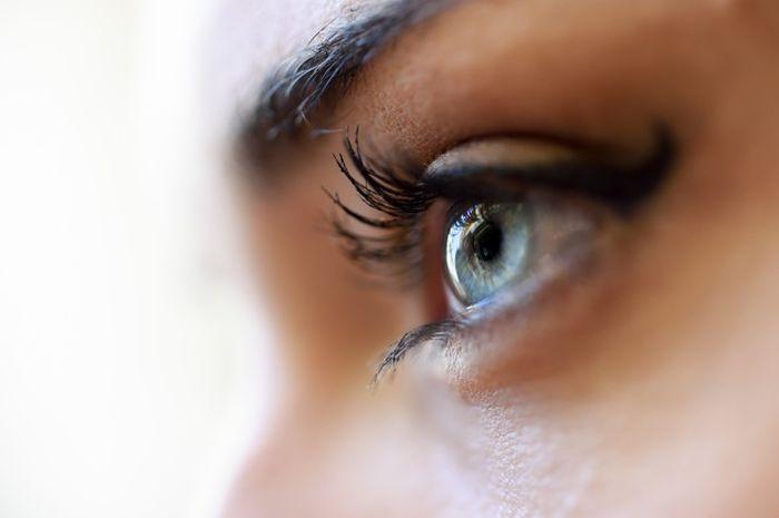 Bulu mata cantik alami bisa didapatkan dengan menggunakan minyak zaitun