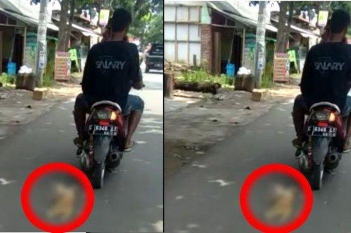 Kucing diseret dua pemuda di Pekalongan, Jawa Tengah.