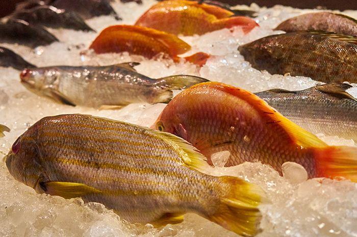 Fresh fishs. Restaurant on Koh Samui. Thailand