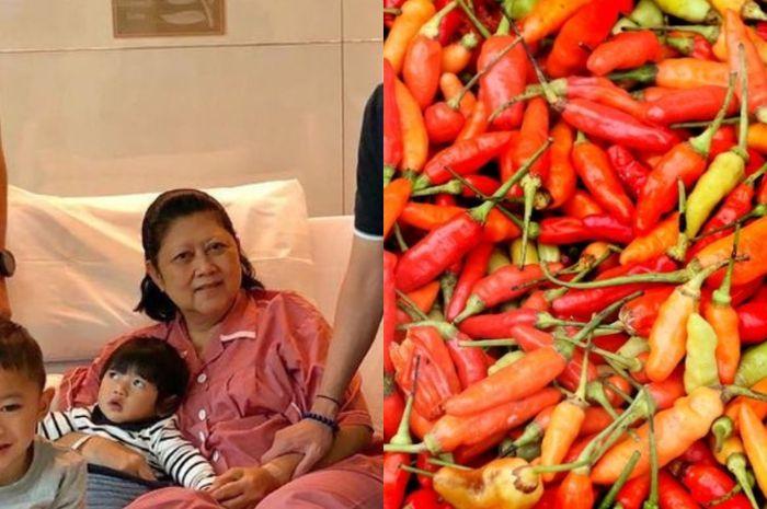 Ani Yudhoyono gemar kantongi dan ngemil cabai rawit