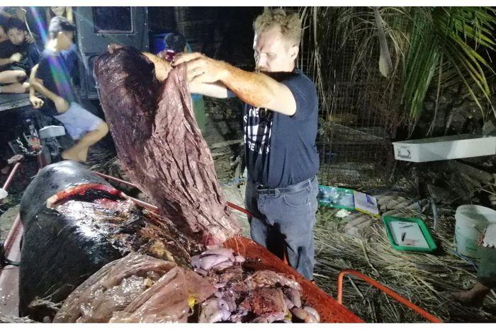 40 kilogram sampah ditemukan pada paus Cuvier yang mati di Filipina.