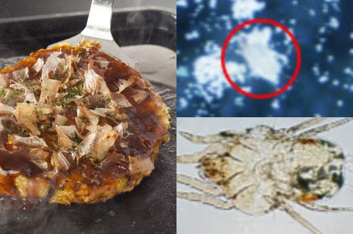 Kutu ditemukan di makanan berbahan tepung terigu
