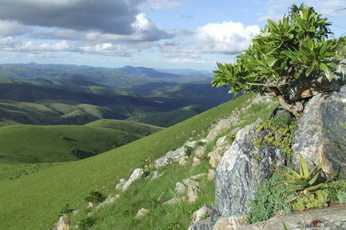 Barberton Makhonjwa Mountains.