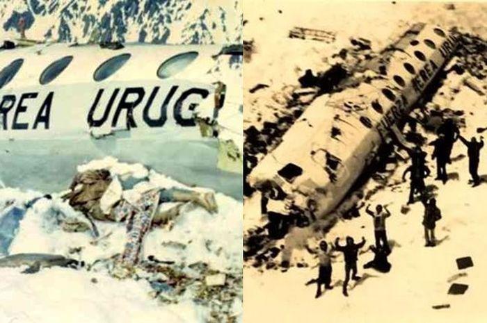 Kisah Korban Selamat Kecelekaan Pesawat yang Hilang Selama 60 Hari, Bertahan Hidup dengan Cara yang Mengerikan