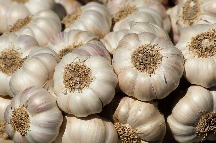 Sering dikonsumsi, ternyata bawang putih bisa picu sakit ini! Segera waspadai mulai sekarang