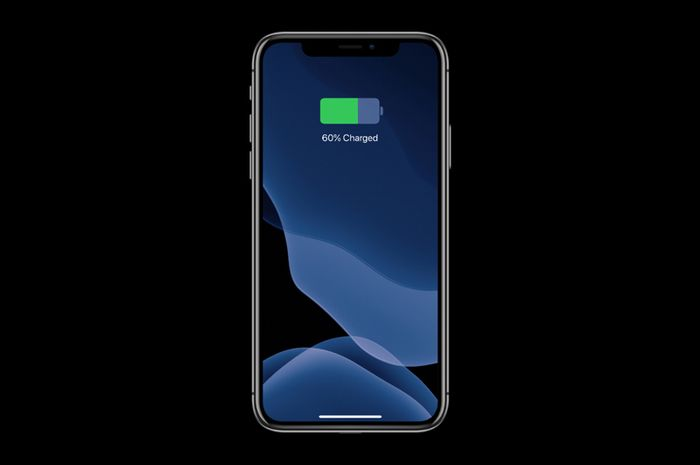 Cara Melihat Cycle Count Baterai iPhone Tanpa Aplikasi Tambahan