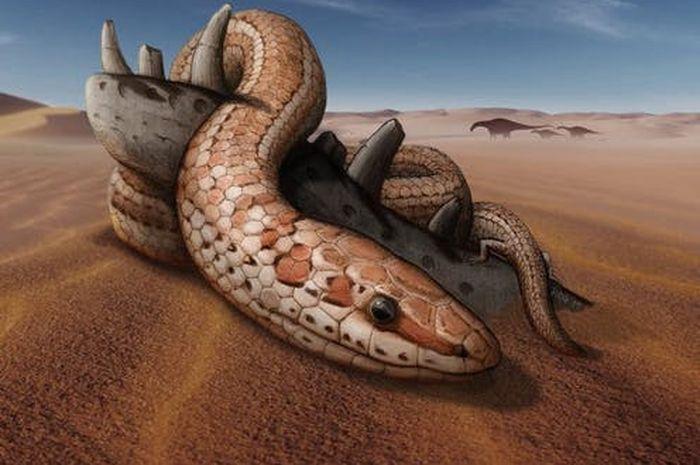 Ilustrasi ular najash.