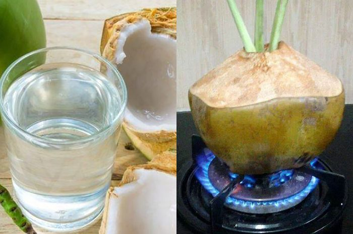 Cuma Rutin Minum Rebusan Air Kelapa Setiap Hari Ternyata Bisa Hindari Penyakit Mengerikan Ini Pada Tubuh Simak Penjelasannya Semua Halaman Sajian Sedap
