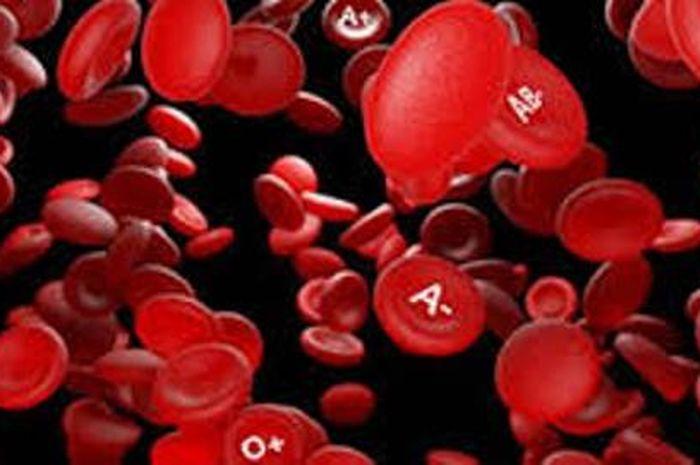 Peneliti Sebut Golongan Darah A Rentan Virus Corona, Golongan ...