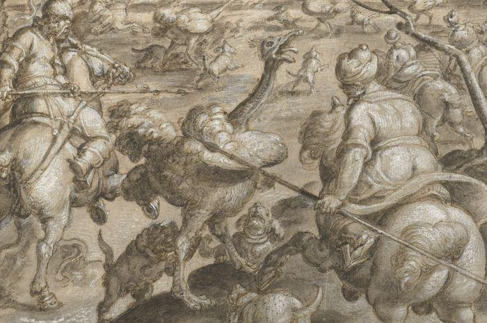 Kegiatan berburu burung unta untuk menjadi pakaian berkelas di kalangan pria Eropa