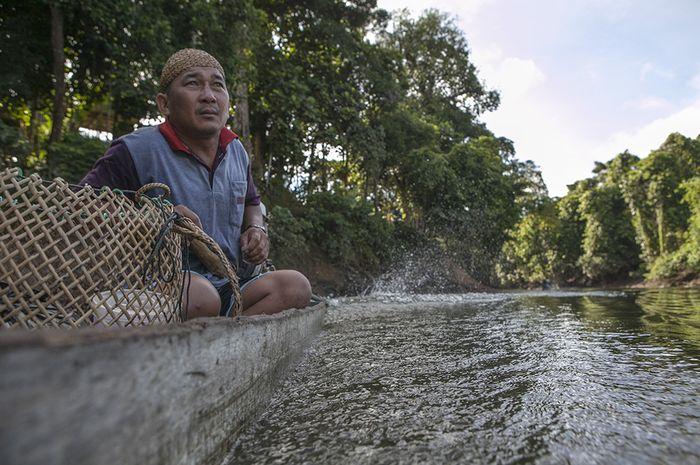 Desa Adat Setulang memiliki hutan yang dikelola secara adat, yakni Tane Olen yang luasnya mencapai sekitar 5.300 hektare. Untuk menuju hutan hujan tropis ini kita dapat menaiki perahu sampan bermesin 15 pk.