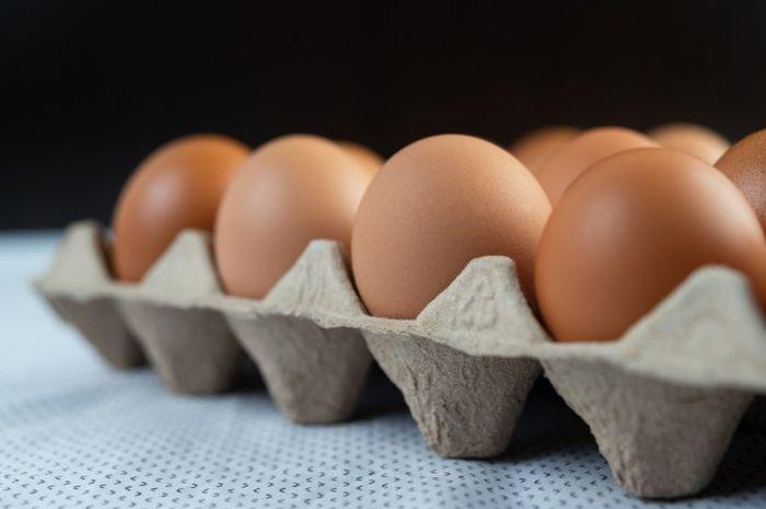 Jangan disepelekan! marak dijual pedagang nakal, ternyata begini cara bedakan cangkang telur yang baik dan buruk!