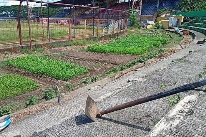 Kondisi Stadion Mattoanging, Makassar, yang beralih fungsi jadi kebun pada area tribun terbuka setelah lama tidak digunakan, Rabu (20/5/2020).