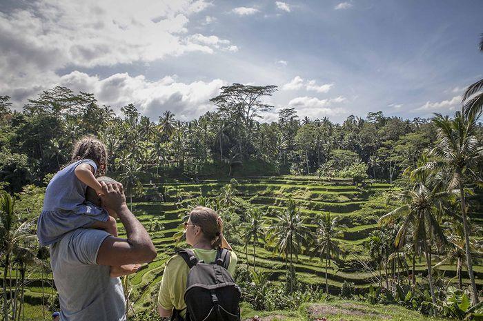 Panorama sawah berundak atau sering disebut dengan terasering di Desa Ceking, Tegalalang, Kabupaten Gianyar, Bali. Warnanya yang hijau nan memanjakan indera mata kita menjadikan kawasan ini ramai dikunjungi wisatawan dalam maupun luar negeri. Kawasan wisata ini berada 32 kilometer dari Kota Denpasar, jika ditempuh menggunakan kendaraan bermotor sekitar satu jam. Terasering memang memiliki fungsi untuk mencegah tanah longsor dan area untuk resapan air dan nyatanya hingga kini masih dipertahankan di Desa Ceking. Tak hanya itu, di Bali kita masih bisa menyaksikkan petani menggarap sawahnya dan menariknya aktifitas para petani tak terganggu dengan wisatawan yang berkunjung.