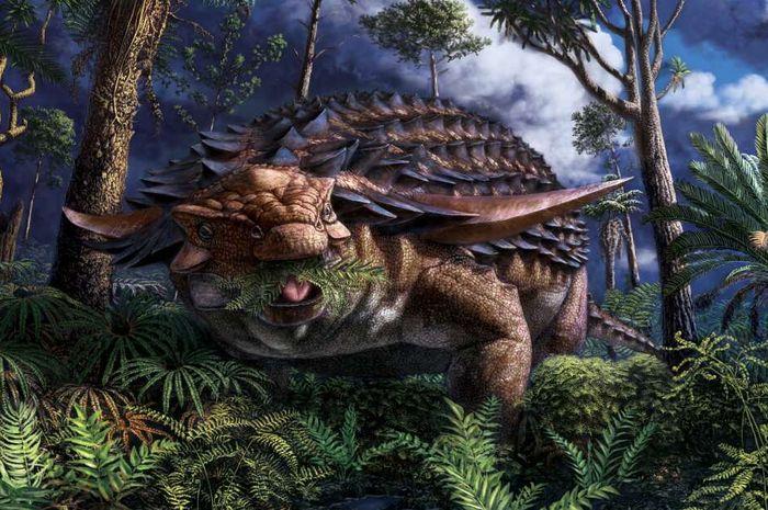 Ilustrasi dinosaurus Borealopelta markmitchelli.