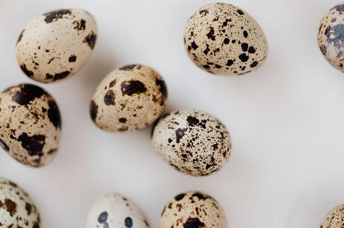 Manfaat telur puyuh untuk kesehatan.