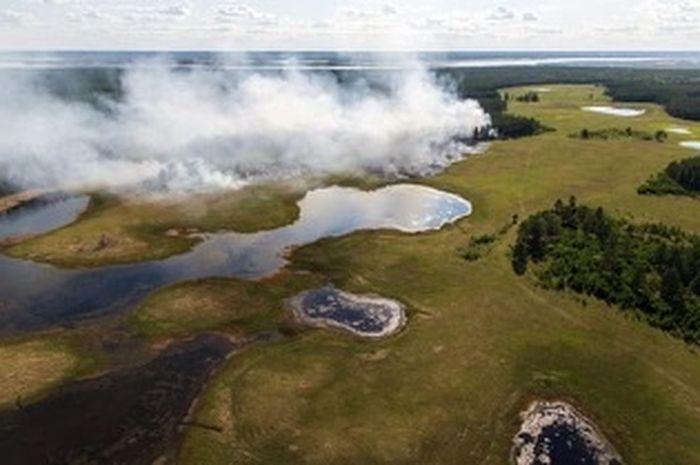 Hutan terbakar di Yakutia tengah, salah satu daerah terdingin di Rusia. Hutan mencakup lebih dari 83 persen wilayahnya; Para ilmuwan terkejut oleh seberapa jauh kebakaran musim panas tahun ini di utara.