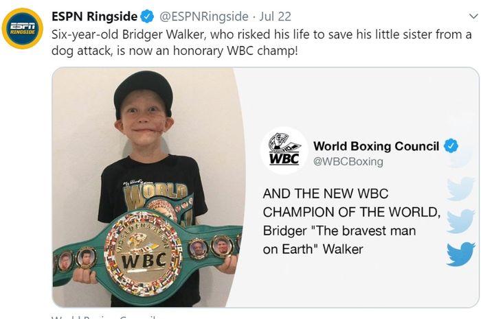 Bridger Walker, dinobatkan sebagai juara kehormatan WBC.