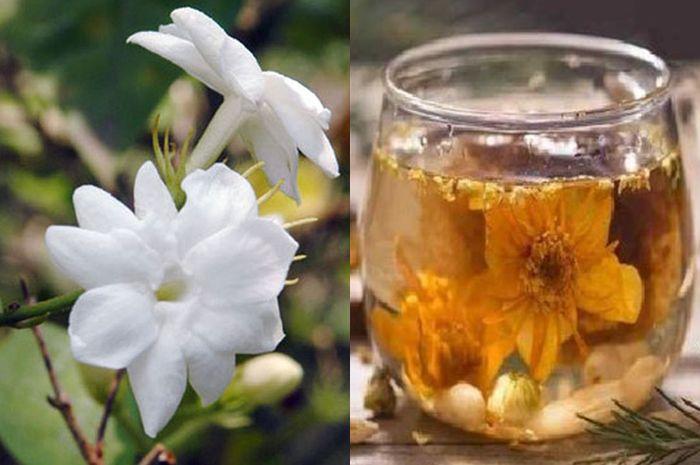 manfaat dari air rendaman bunga melati untuk tubuh