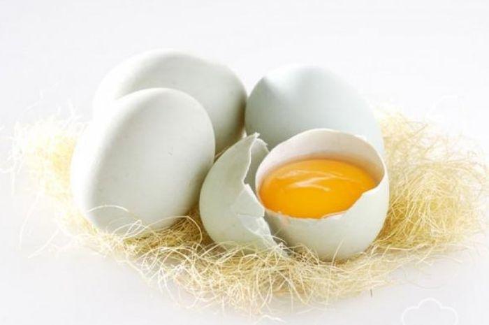 Di balik manfaatnya, telur bebek bisa mengancam nyawa melayang.