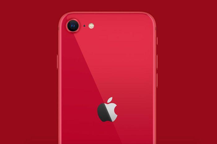 iPhone SE 2020 Akhirnya Dijual di Indonesia, Harga Mulai 8 ...