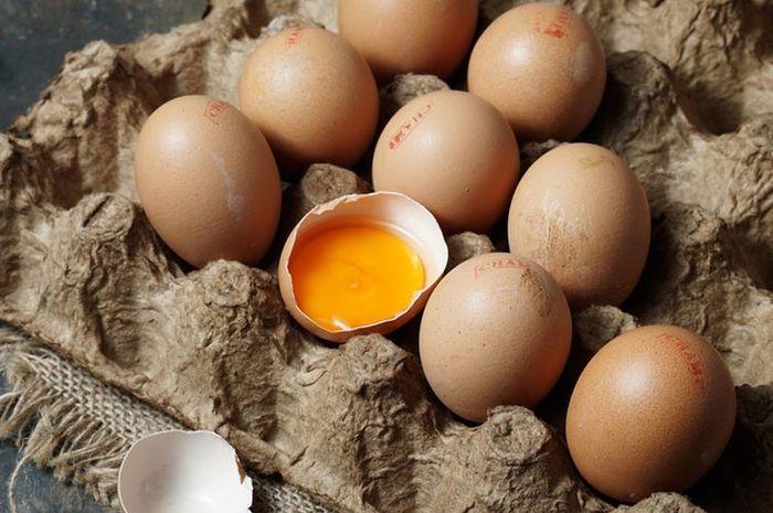 Harganya Jauh Lebih Mahal, Benarkah Telur Omega Sebegitu Bermanfaat Bagi  Tubuh? Fakta atau Cuma Hoax? - Semua Halaman - Sajian Sedap