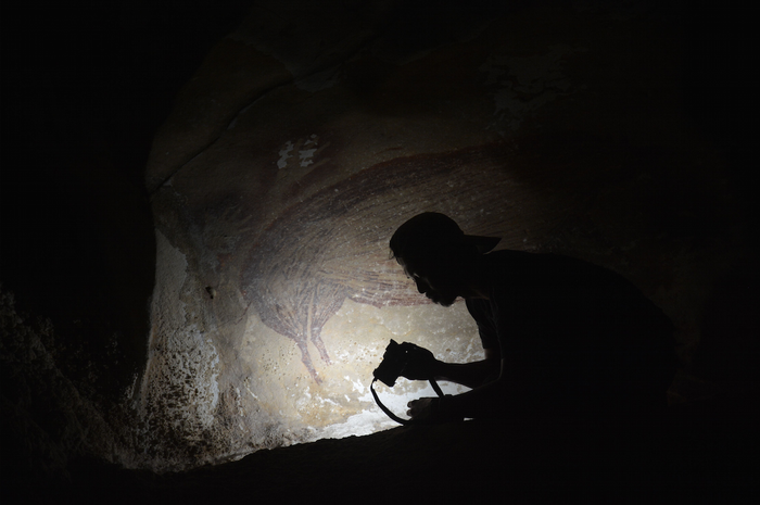 Foto figur Babi 1 dengan pertanggalan setidaknya 45.500 tahun yang lalu di Leang Tedongnge.