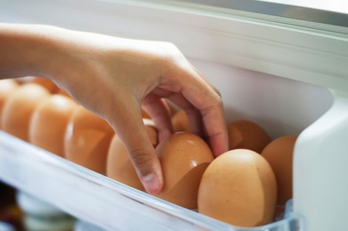 memilih telur