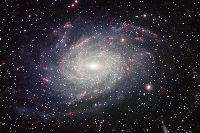 Galaksi Bimasakti