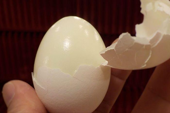 Suhu yang dingin bisa membuat telur lebih mudah dikupas .