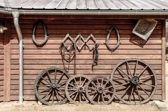 Manusia membutuhkan ribuan tahun untuk membuat roda.
