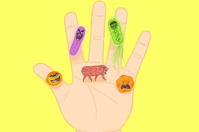 Bakteri yang hidup di saluran pencernaan manusia adalahcontoh bakteri baik