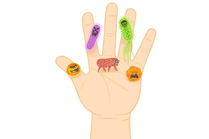 Kuman/bakteri pada tangan kotor.