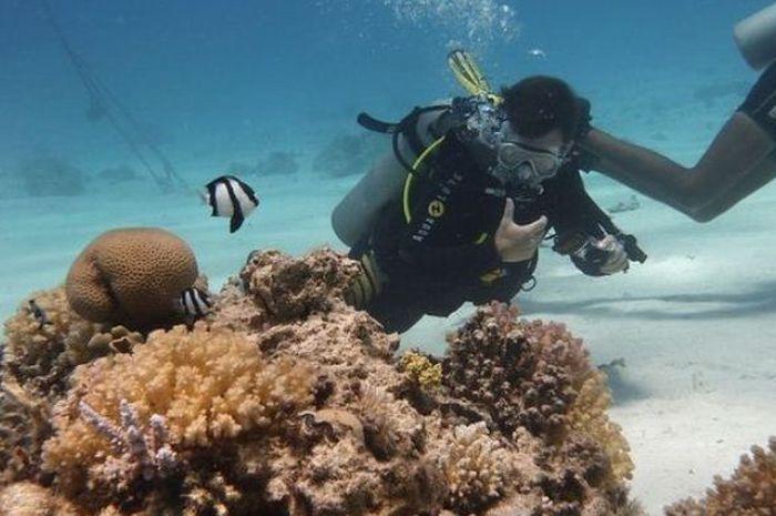 Saat scuba diving, kita akan menggunakan beberapa alat menyelam.