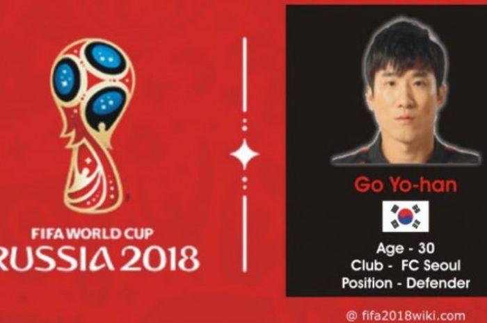 Profil pemain timnas Korsel pada Piala Dunia 2018, Go Yo-han.