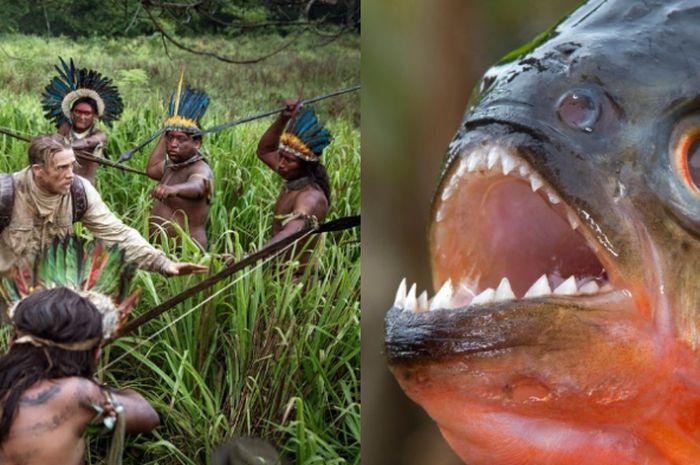 Dari Suku Kanibal Sampai Ikan Mematikan Inilah 5 Misteri Yang