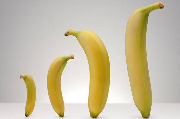 Ngobrolin pisang yuk! Sesama pisang jangan suka membanding-bandingkan!