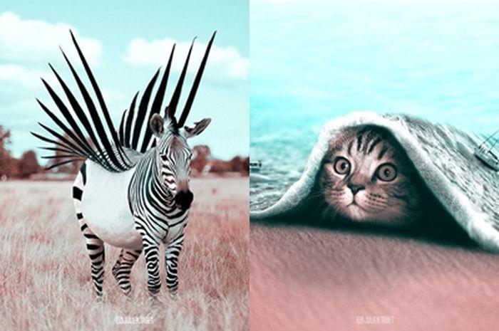 Binatang Gubahan Photoshop